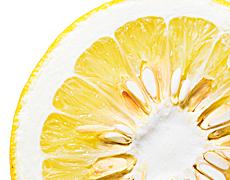 エキス グレープフルーツ 種子